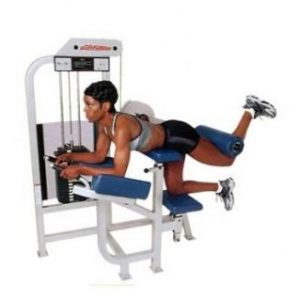 LIFE FTNESS PRO SERIES 1 GLUTE