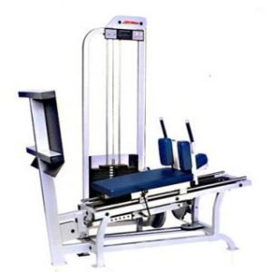 LIFE FTNESS PRO SERIES 1 HORIZONTAL LEG PRESS