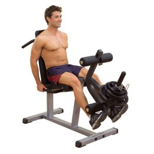 GLCE365 SEATED LEG EXTENSION & SUPINE CURL